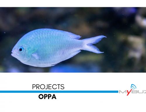 Nuovo server per OPPA