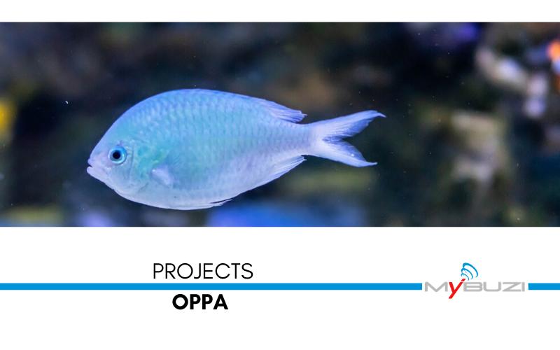 MyBuzi - OPPA - Organizzazione Produttori Pesce Azzurro Ancona